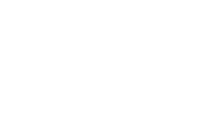 New Style Corp Store